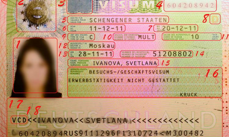 Как правильно читать Шенгенскую визу
