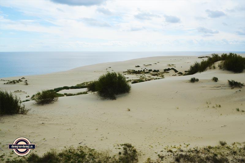 На Куршскую Косу самостоятельно. Вид на дюну Эфа