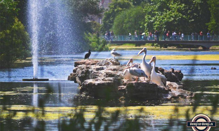 5 лучших парков Лондона