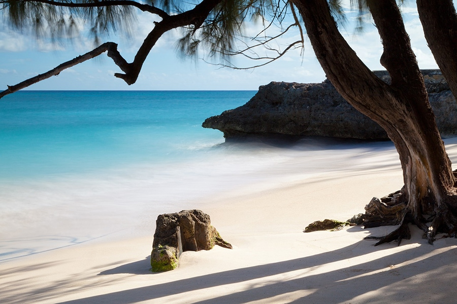 Тропический рай Барбадоса
