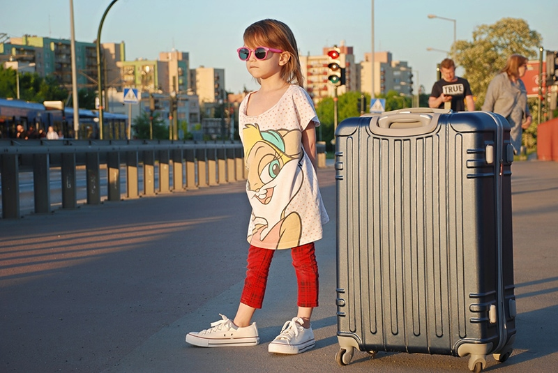 В билете обычно указано, сколько всего багажа вы можете взять с собой