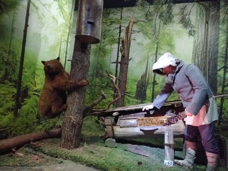 В Музее природы есть не только чучела животных, но и человека. Страшноватое зрелище, честно говоря...