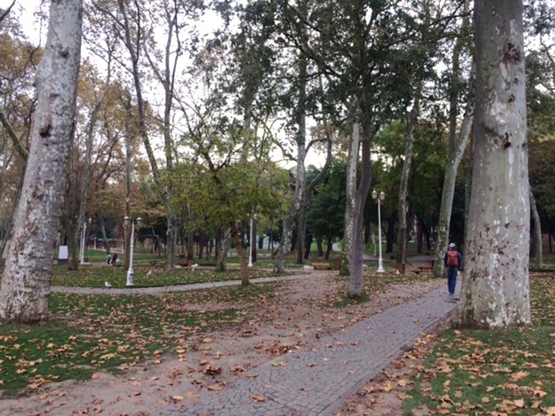 Парк Гюльхане рядом с Дворцом Топканы в ноябре