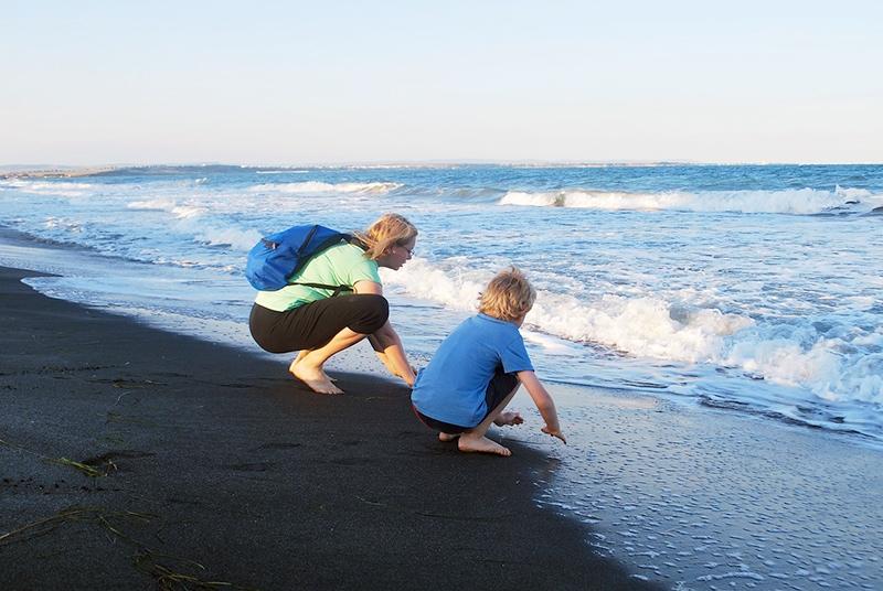 В поселке много туристов, поэтому все пляжи многолюдны. В поисках более спокойного места придется проехать как минимум пару десятков километров в сторону Туапсе