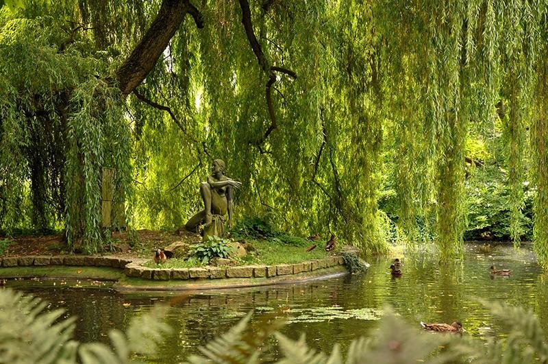Старинный пруд с утками в Карловых Варах