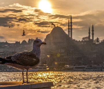 По Стамбулу за 3 дня