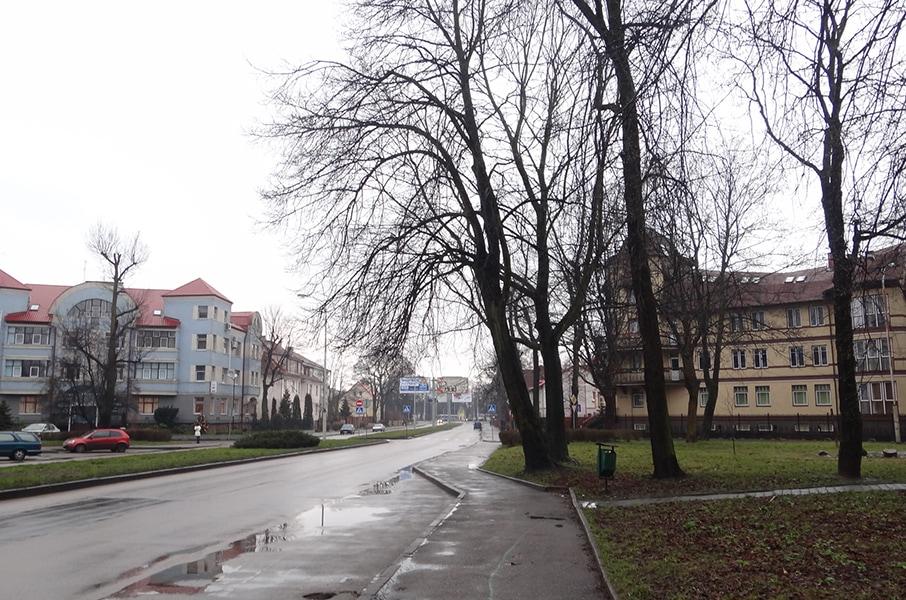 Одна из городских улиц утром Нового года
